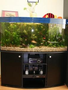 akvarija1